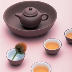 明山茶業株式会社 写真